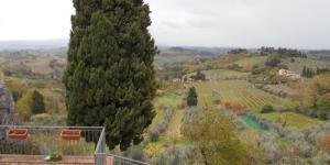 - Olaszország- Toszkán kertek